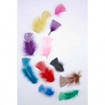 Tropical Feather Packet of 20