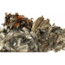 Natural Value Pack - Feathers