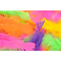 Fluro Turkey Feathers Multi (PK 250)