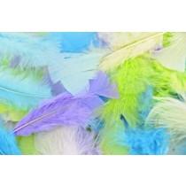 Pastel Turkey Feathers Multi (PK 250)